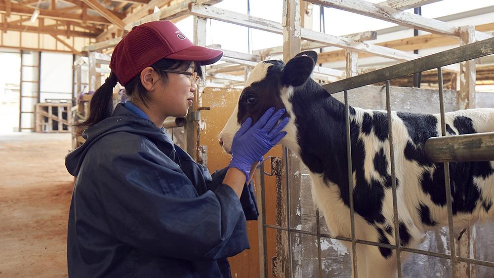畜産体験コース